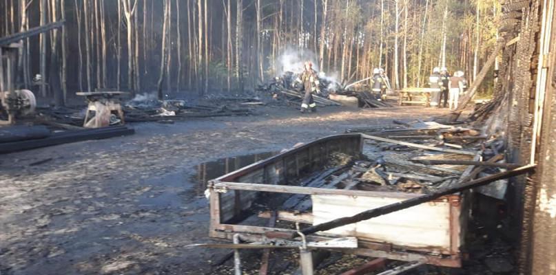 Spłonął tartak i fragment lasu. Ogromne straty  - Zdjęcie główne
