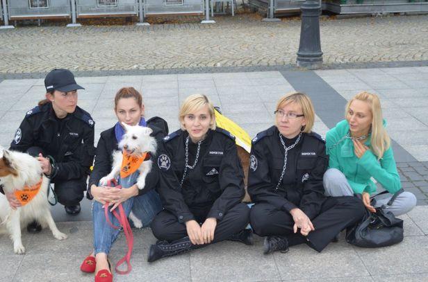 Protestował również pies… na wózku [FOTO] - Zdjęcie główne