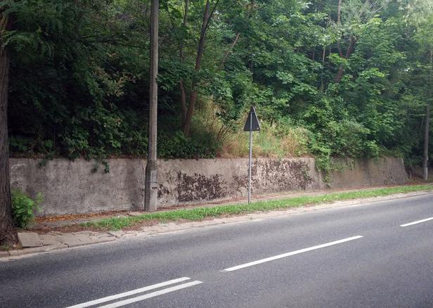 Budżet obywatelski: wygrały murale?  - Zdjęcie główne