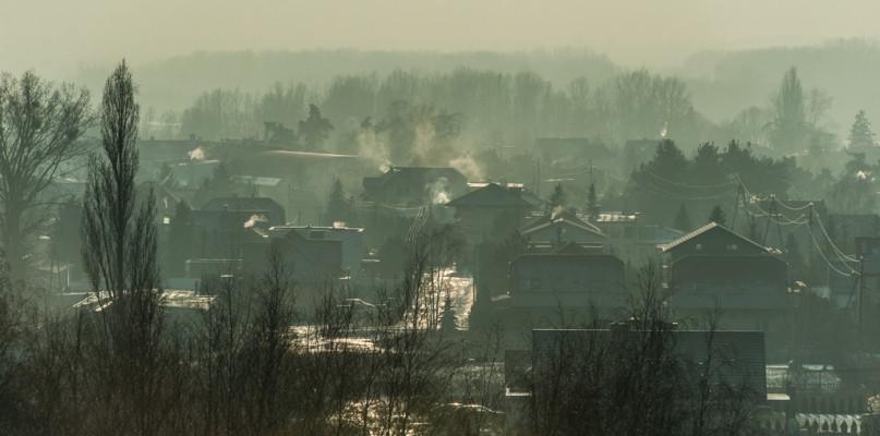 Straż miejska kontroluje, czym palimy w piecu. Kolejne mandaty  - Zdjęcie główne