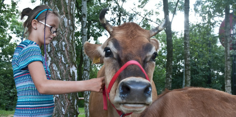 ZOO zaprasza na wiejskie klimaty! - Zdjęcie główne