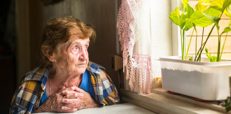 Kilkadziesiąt milionów złotych emerytom wypłacił płocki ZUS  - Zdjęcie główne