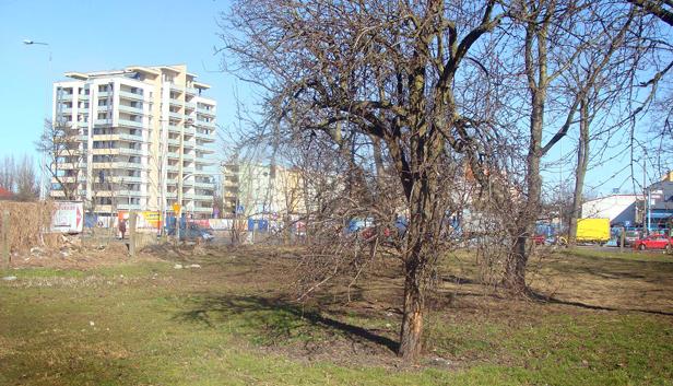Będzie nowy minipark w centrum [FOTO] - Zdjęcie główne