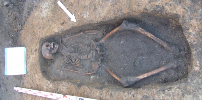 W centrum Płocka odkryli cmentarzysko ze średniowiecza  - Zdjęcie główne