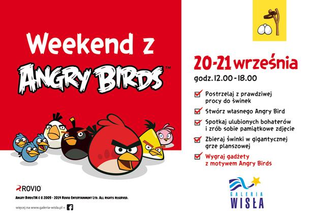 Angry Birds w Wiśle. I strzelanie z procy - Zdjęcie główne