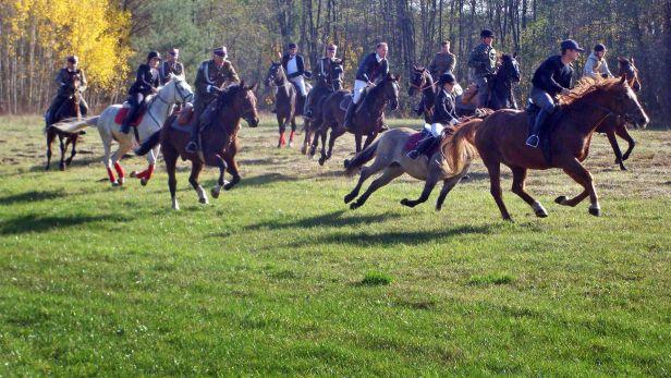 Pognali na koniach za lisem  [FOTO] - Zdjęcie główne