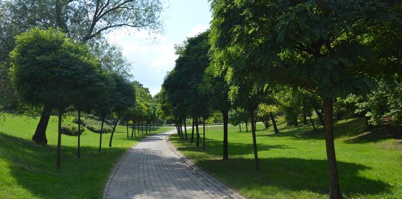"""Egipskie ciemności w parku. """"Strach chodzić tędy nocą"""" - Zdjęcie główne"""