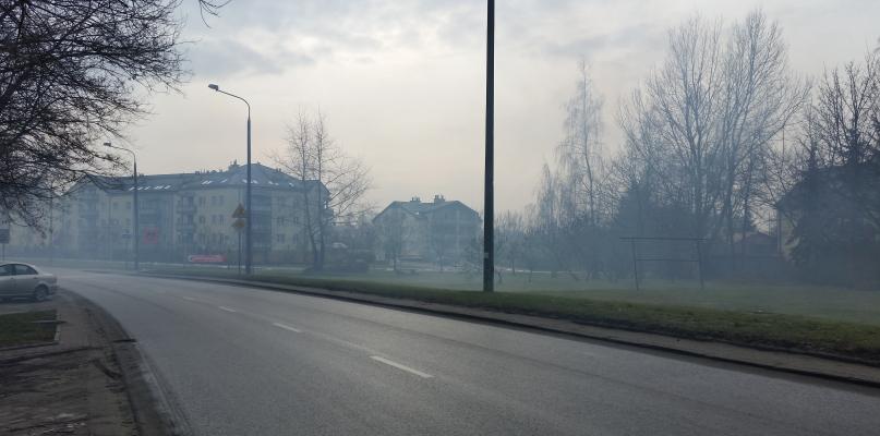 Płocczanie częściej skarżą się na dym z kominów sąsiadów. Co wynika z kontroli?  - Zdjęcie główne
