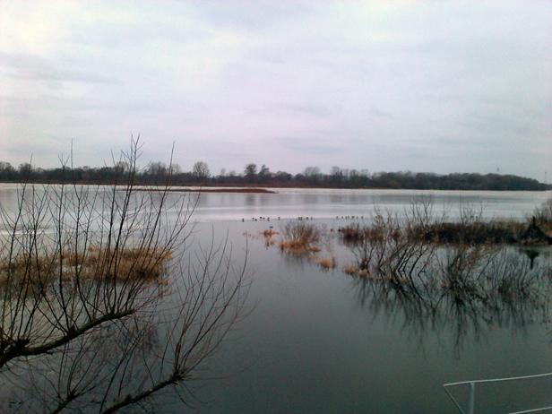 Do powodzi brakuje tylko 30 centymetrów - Zdjęcie główne