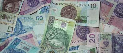 Takie są dochody płockich radnych... - Zdjęcie główne