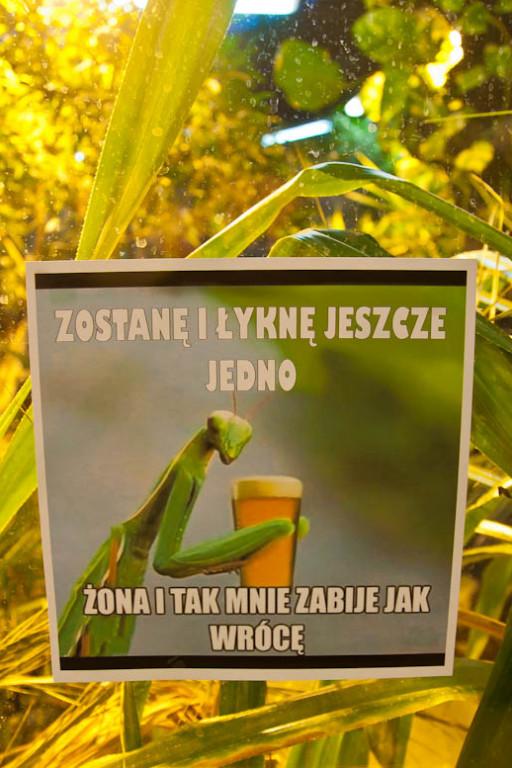 Zew natury bez cenzury w płockim zoo - Zdjęcie główne