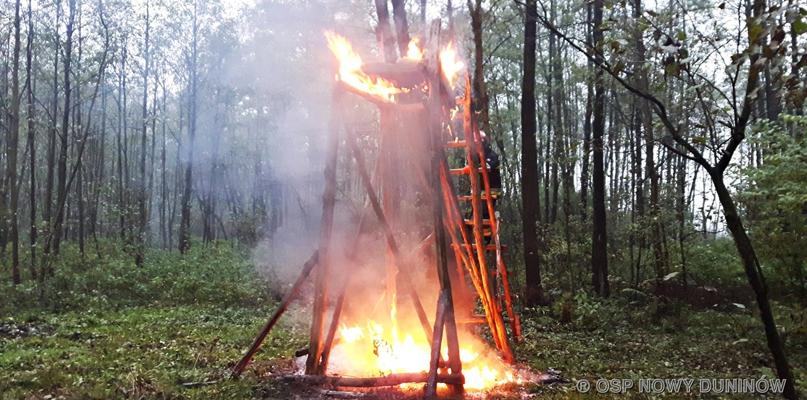 Pożar. W płomieniach stanęła leśna ambona - Zdjęcie główne