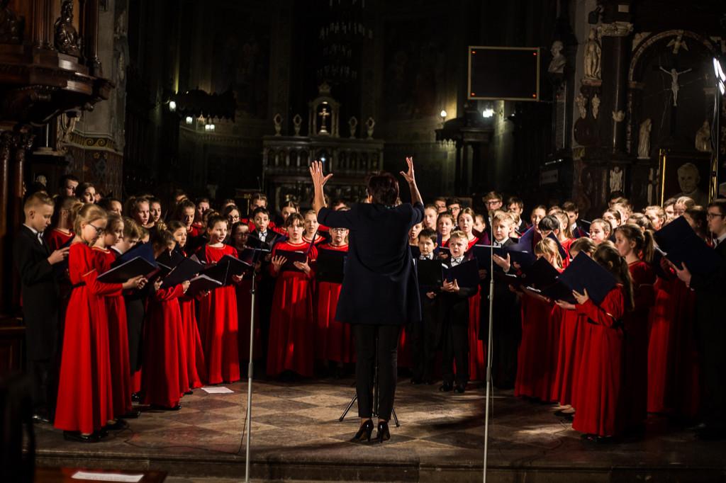 Koncerty organowe w płockiej katedrze - Zdjęcie główne
