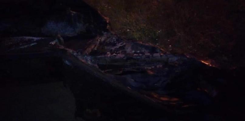 Płonąca łódź na Wiśle. Interweniowała straż pożarna, policja szuka złodzieja - Zdjęcie główne