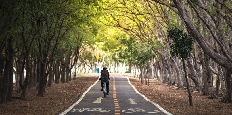 Połączą Płock z Wyszogrodem drogą dla rowerów - Zdjęcie główne