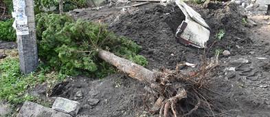 Koparka niszczy ogródki w centrum miasta. Mieszkańcy załamują ręce [FOTO] - Zdjęcie główne