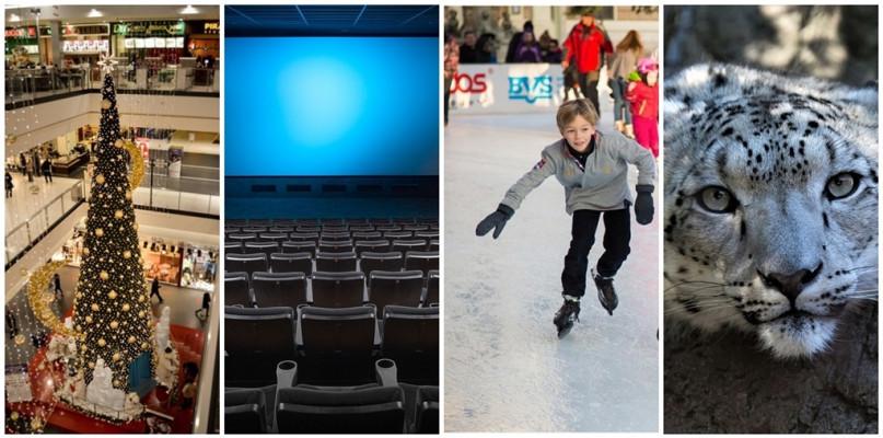 Sklepy, kina, muzea, zoo, lodowisko - co będzie otwarte w święta? - Zdjęcie główne