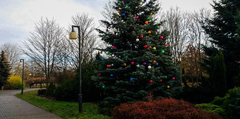 Park na Podolszycach też już gotowy na święta  - Zdjęcie główne