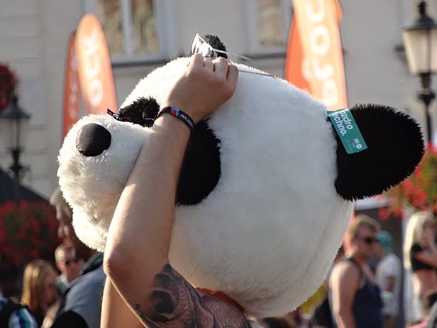 Tłumy na starówce. Krokodyl,panda…[FOTO] - Zdjęcie główne