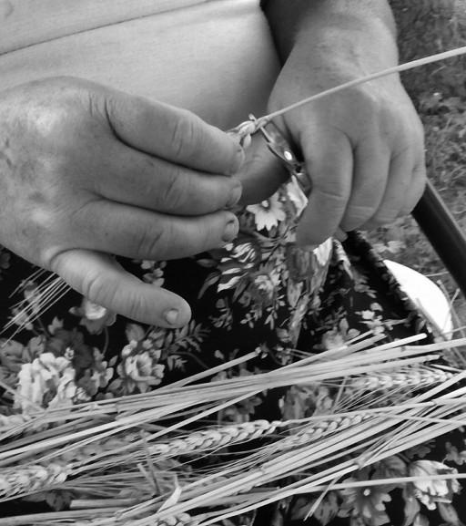 Trwają przygotowania do dożynek w gminie Bodzanów - Zdjęcie główne