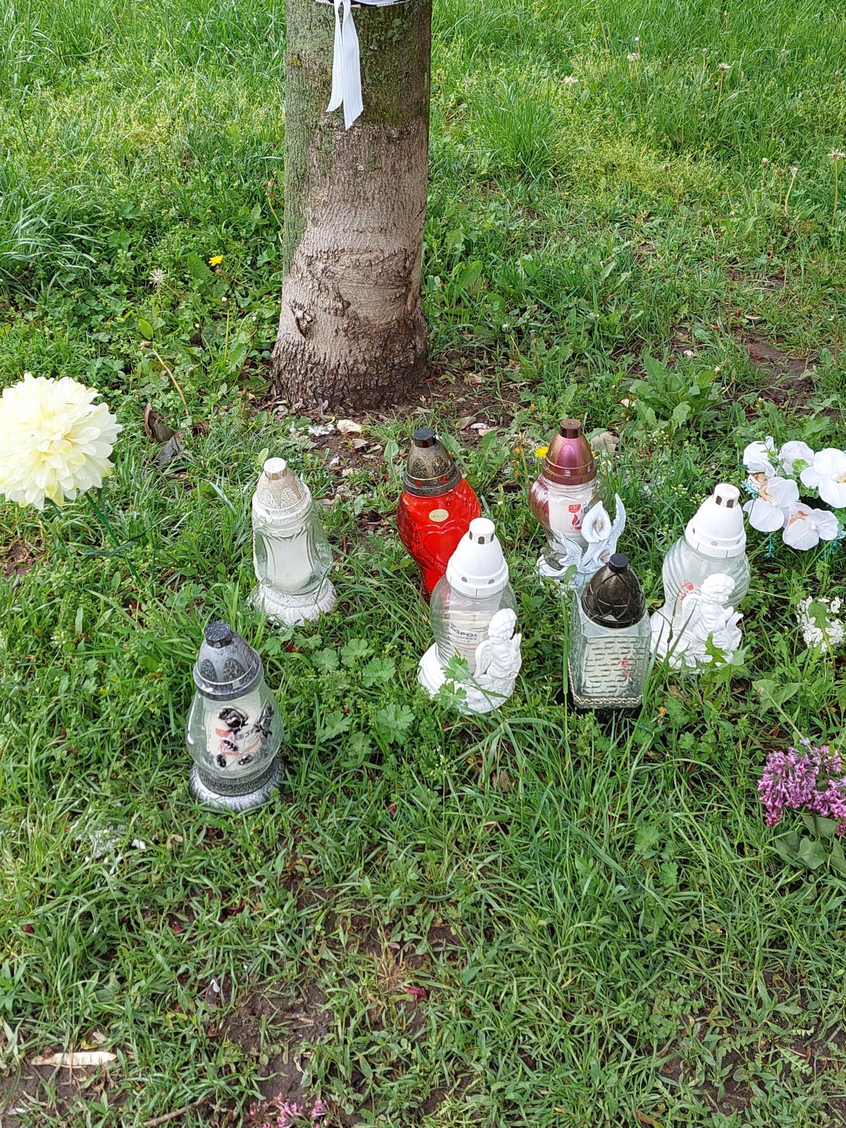 Stawiają znicze i kwiaty. Co się stało w parku obok Mariawitów? - Zdjęcie główne