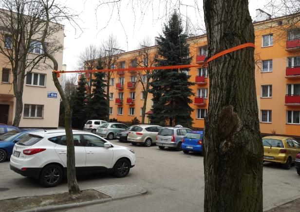 Drzewo może runąć. Prowizorka od tygodni - Zdjęcie główne