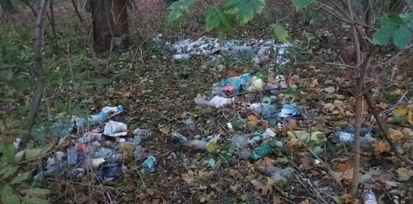 Góra śmieci w płockim parku. Kto za to odpowiada? - Zdjęcie główne
