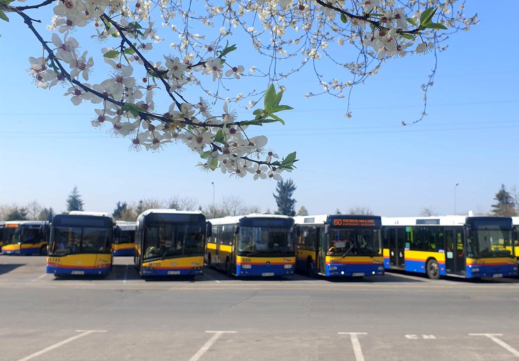 Kolejne zmiany w płockiej Komunikacji Miejskiej - Zdjęcie główne