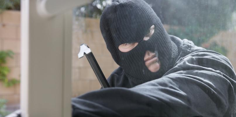 Zuchwała kradzież i bardzo nietypowy łup  - Zdjęcie główne