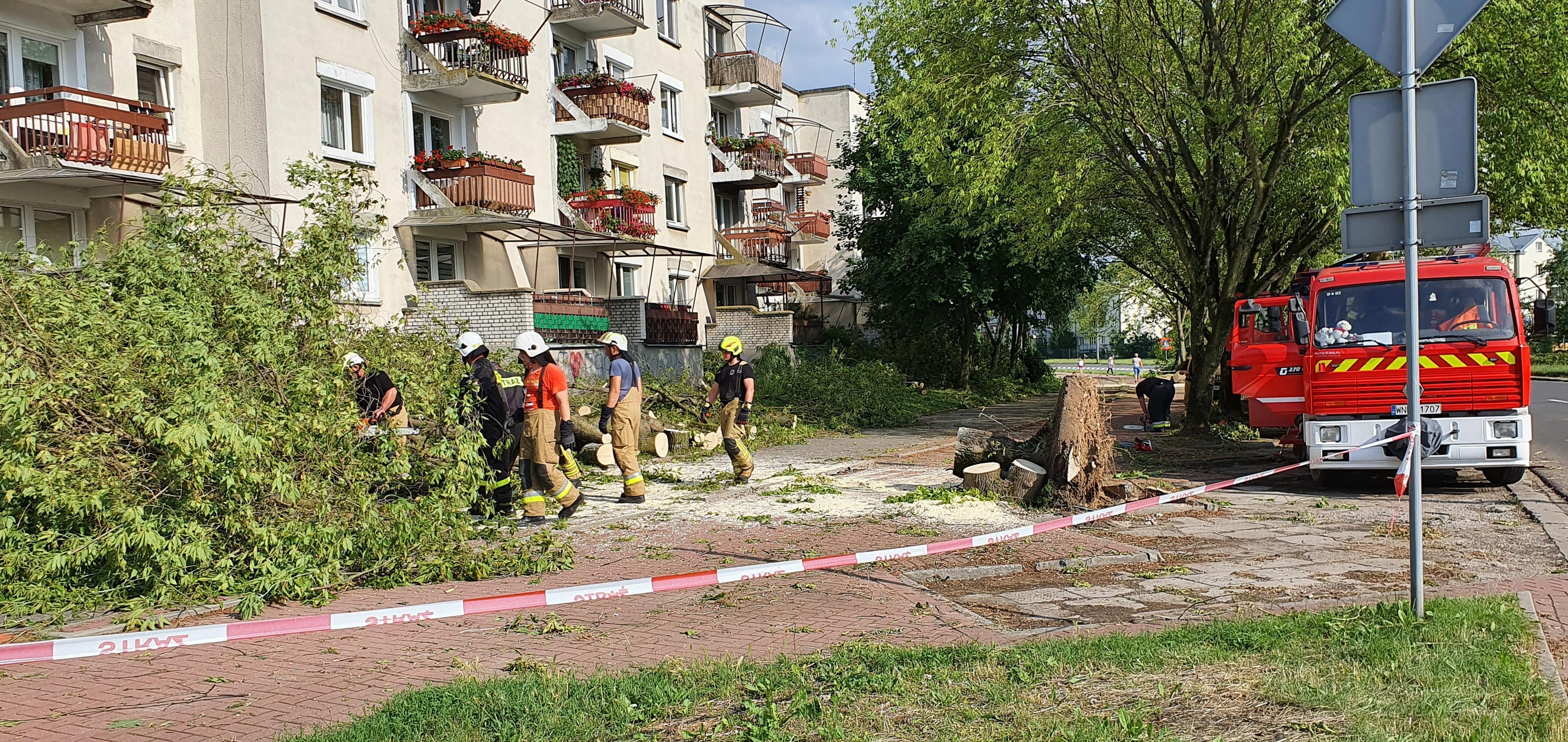 Podolszyce i Zielony Jar po nawałnicy. Trwa usuwanie szkód [FOTO] - Zdjęcie główne