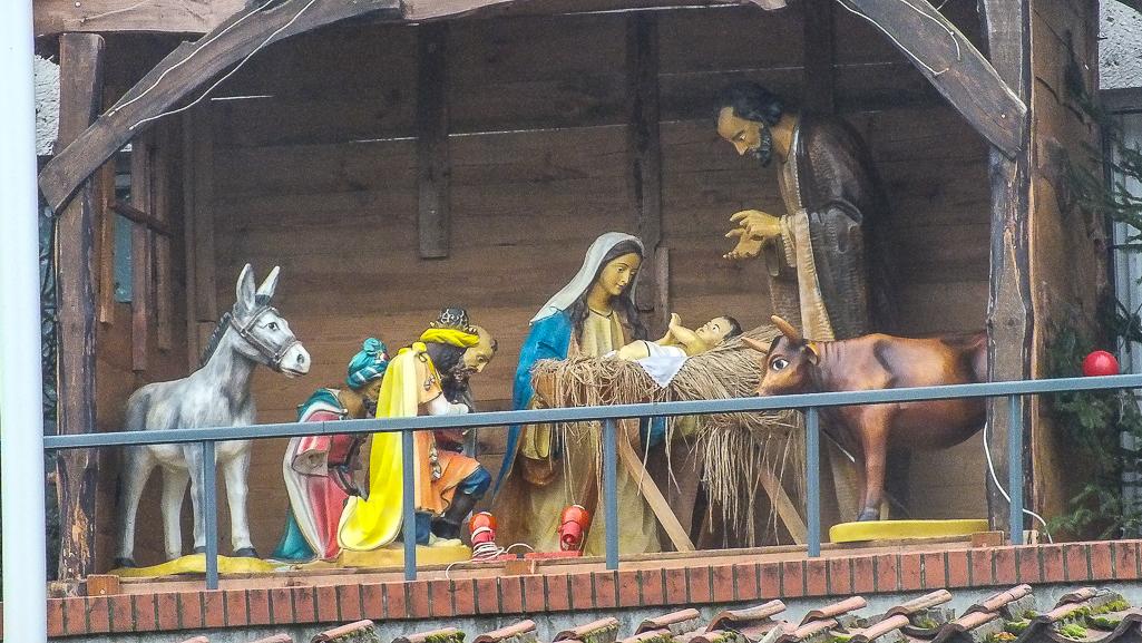 Szopki bożonarodzeniowe w płockich kościołach - Zdjęcie główne