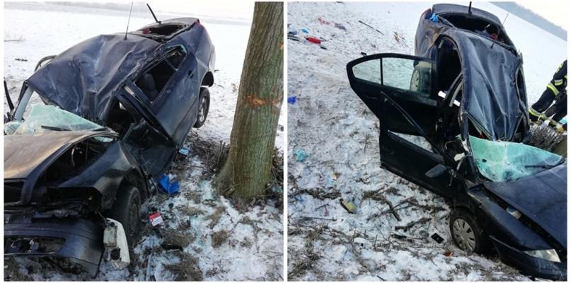 Samochód uderzył w drzewo. Kierująca w ciężkim stanie [FOTO] - Zdjęcie główne