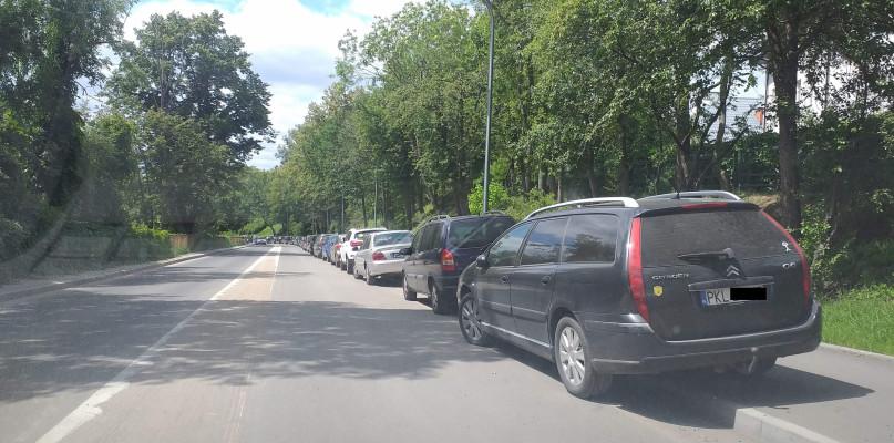 Zoo w weekendy przeżywa najazd turystów. Samochody stoją dosłownie wszędzie  - Zdjęcie główne