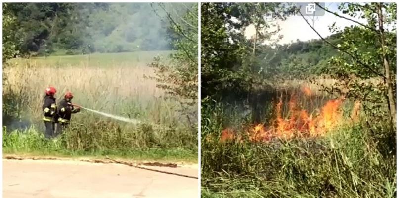 Płomienie w okolicy Sobótki, wzywano strażaków [VIDEO] - Zdjęcie główne