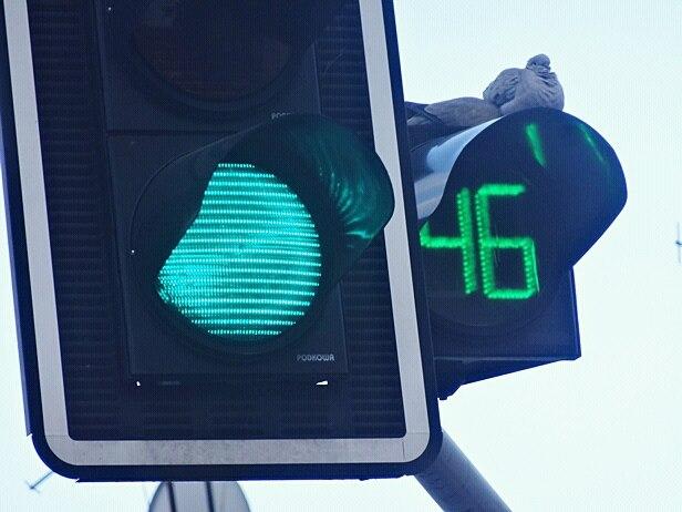 Czy sekundniki znikną z płockich ulic?  - Zdjęcie główne
