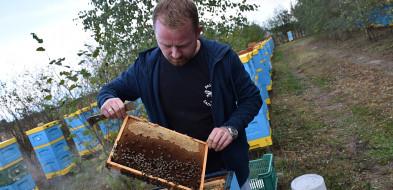 Banda Miodziarzy i miliony pszczół [FOTO] - Zdjęcie główne