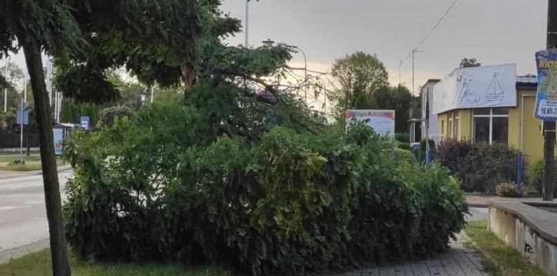 Uszkodzone dachy, połamane drzewa. Około 50 interwencji strażaków  - Zdjęcie główne