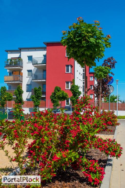Mieszkania z widokiem na dolinę Wisły - Zdjęcie główne