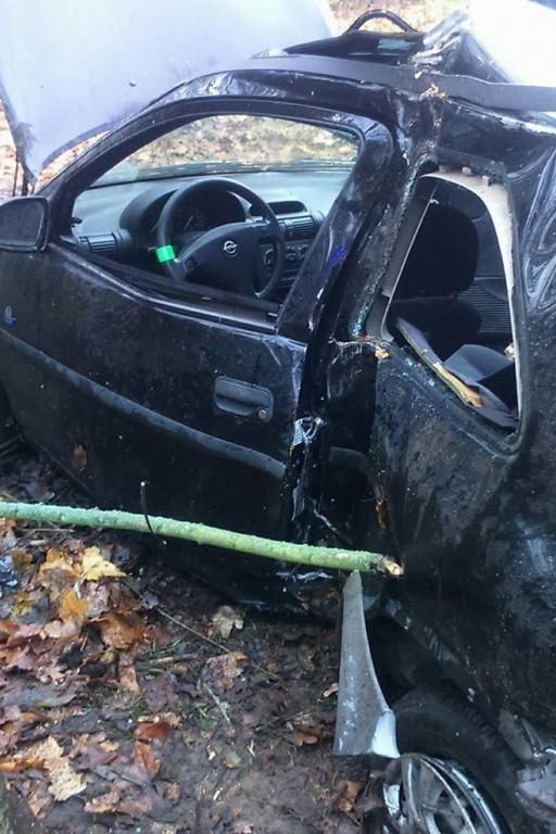 Samochód uderzył w drzewo - Zdjęcie główne