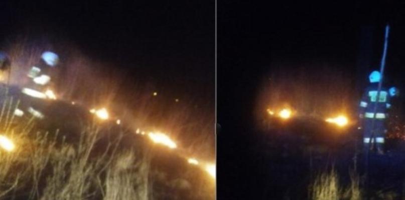 Pożar nieużytków pod Płockiem - Zdjęcie główne