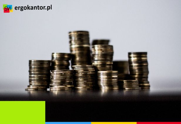 Wymiana walut online sposobem na oszczędzanie - Zdjęcie główne