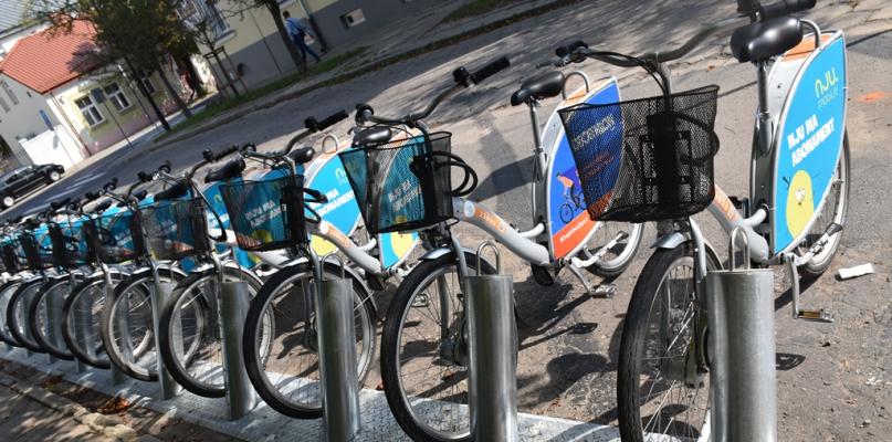 Widzieliście rowery z niebieskimi fotelikami? Już są do wypożyczenia - Zdjęcie główne