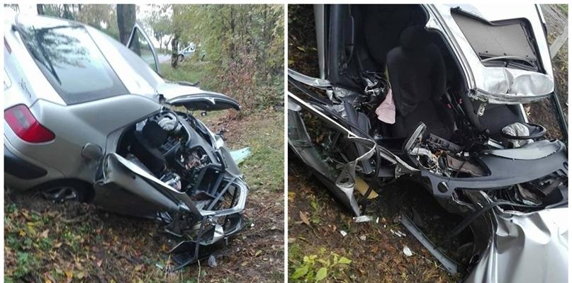 Wjechał autem do rowu i uderzył w drzewo [FOTO] - Zdjęcie główne