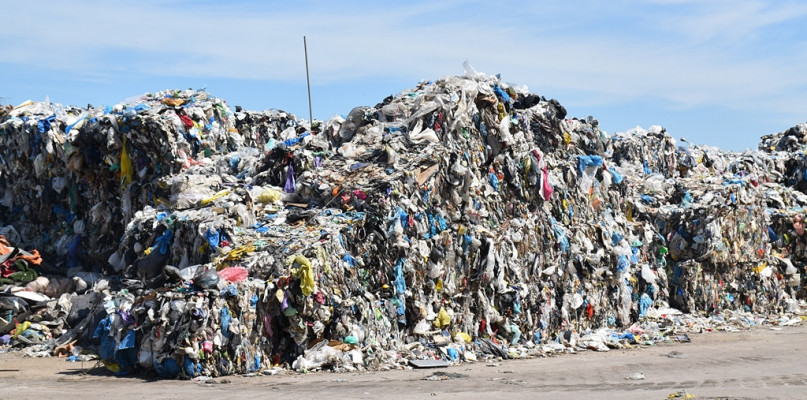 Oszukujemy w deklaracjach śmieciowych. Radny pyta, jak radzą sobie inni - Zdjęcie główne