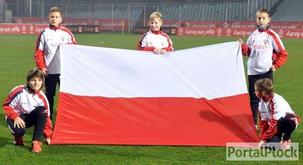 Reprezentacja zagra w Płocku z Walią - Zdjęcie główne
