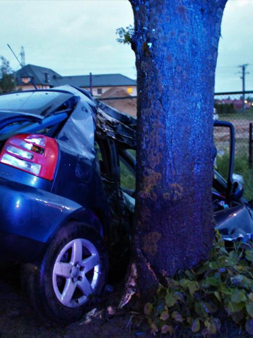 Samochód uderzył w drzewo. Ranny kierowca - Zdjęcie główne
