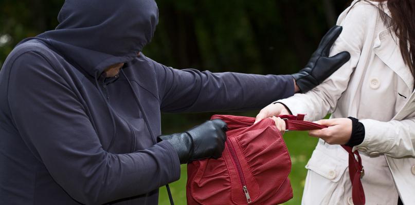 Najpierw ją przewrócił, a następnie wyrwał torebkę! - Zdjęcie główne