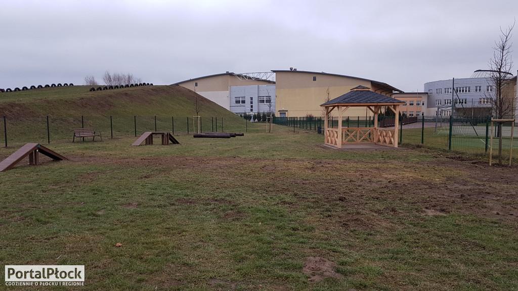 Sześć firm chce zaprojektować park. Ile sobie liczą za tę pracę? - Zdjęcie główne