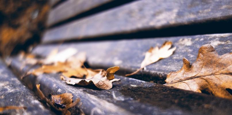 Młoda dziewczyna leżała na ławce. Nie było z nią żadnego kontaktu - Zdjęcie główne