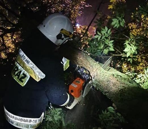 W nocy mocno wiało. Kilka interwencji strażaków w Płocku i powiecie  - Zdjęcie główne